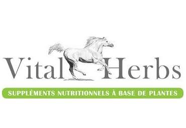 Phytothérapie cheval